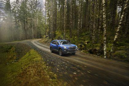 2022 Subaru Forester Wilderness 5