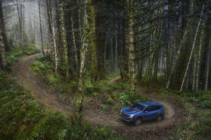 2022 Subaru Forester Wilderness 6