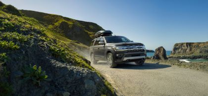2022 Ford Expedition Platinum 1