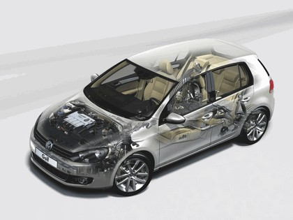 2008 Volkswagen Golf VI 40