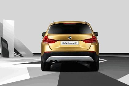 2008 BMW X1 concept 5