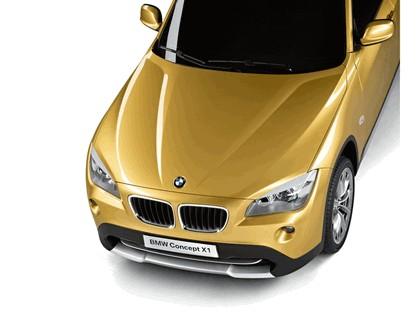 2008 BMW X1 concept 8
