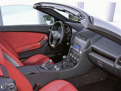 2009 Mercedes-Benz SLK350 13