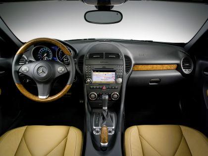 2009 Mercedes-Benz SLK350 15