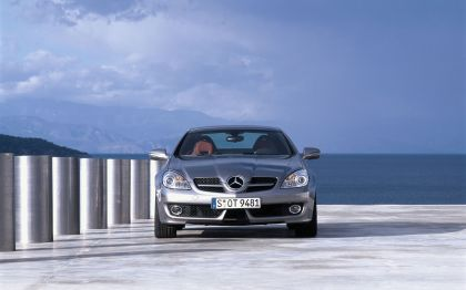 2009 Mercedes-Benz SLK350 23