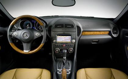 2009 Mercedes-Benz SLK350 27