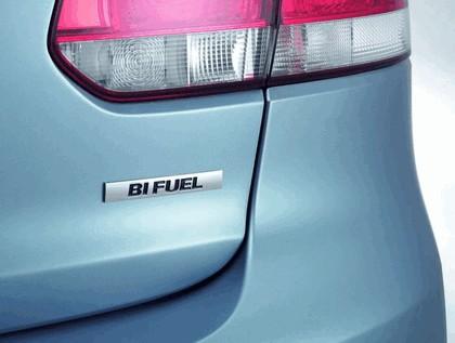 2009 Volkswagen Golf VI BiFuel 2