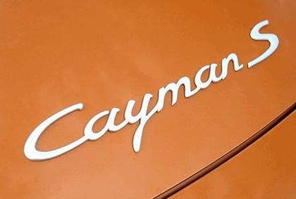 2010 Porsche Cayman S 39