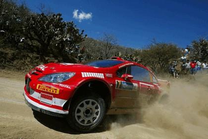 2005 Peugeot 307 WRC 3
