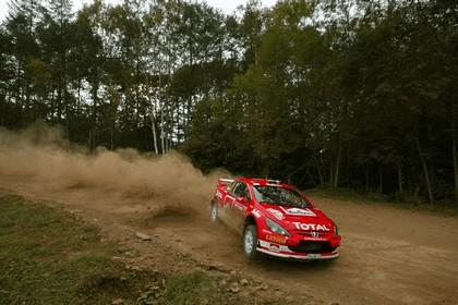 2005 Peugeot 307 WRC 13
