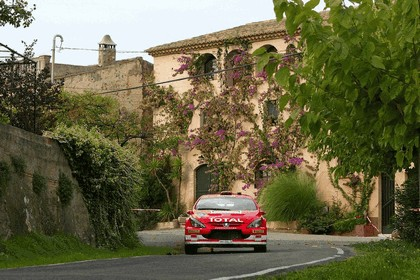 2005 Peugeot 307 WRC 15