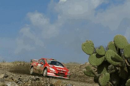 2004 Peugeot 307 WRC 3