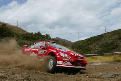2004 Peugeot 307 WRC 6