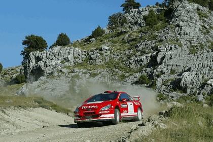 2004 Peugeot 307 WRC 7