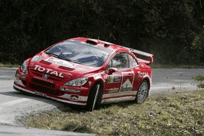 2004 Peugeot 307 WRC 15