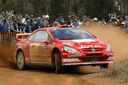 2004 Peugeot 307 WRC 16
