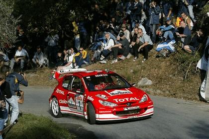 2003 Peugeot 206 WRC 11