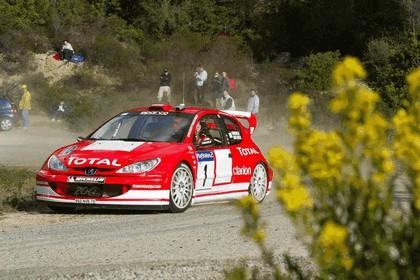 2003 Peugeot 206 WRC 12
