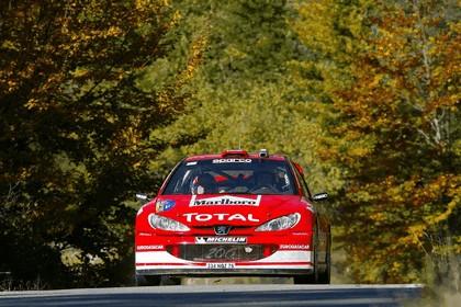 2003 Peugeot 206 WRC 13