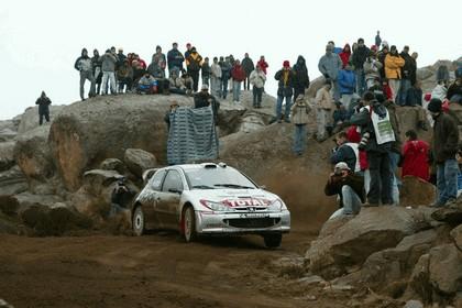 2002 Peugeot 206 WRC 6