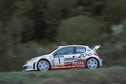 2001 Peugeot 206 WRC 4