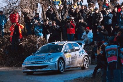 2000 Peugeot 206 WRC 1
