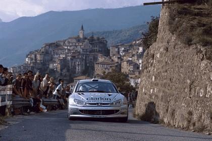 2000 Peugeot 206 WRC 12