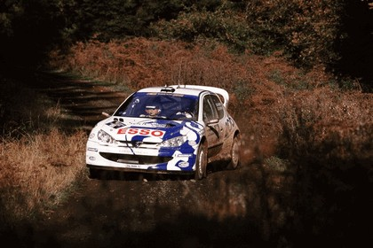 1999 Peugeot 206 WRC 1