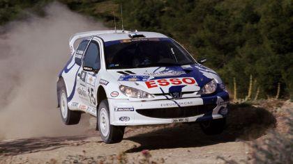 1999 Peugeot 206 WRC 9