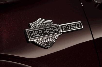 2010 Ford F-150 Harley-Davidson edition 19