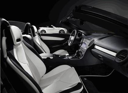 2009 Mercedes-Benz SLK 2LOOK edition 9