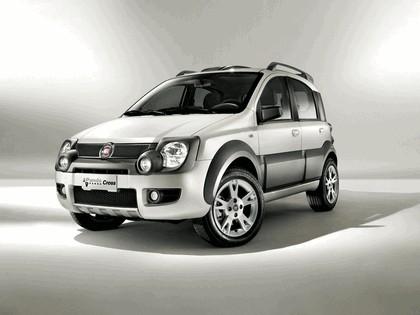 2009 Fiat Panda Panda Cross 2