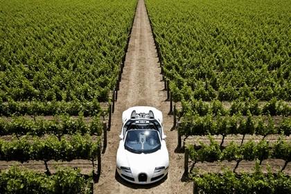 2009 Bugatti Veyron 16.4 Grand Sport - Napa Valley 12
