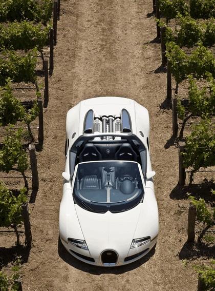 2009 Bugatti Veyron 16.4 Grand Sport - Napa Valley 13