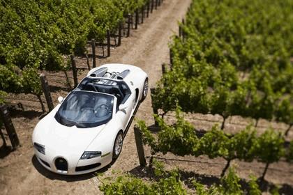 2009 Bugatti Veyron 16.4 Grand Sport - Napa Valley 15