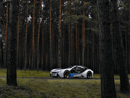 2009 BMW Vision EfficientDynamics 74