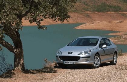 2004 Peugeot 407 5