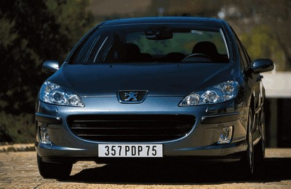 2004 Peugeot 407 24