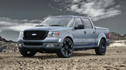 2010 Ford F150 by Magnat 4