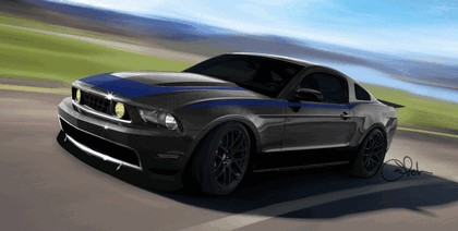 2011 Ford Mustang RTR Package 15