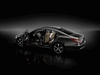 2010 Mercedes-Benz CLS 22