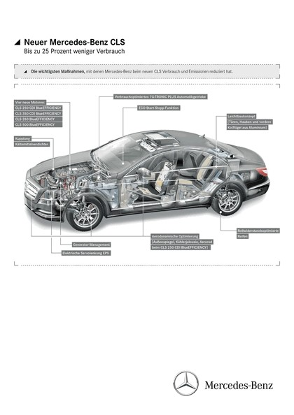 2010 Mercedes-Benz CLS 113
