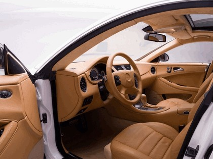2009 Mercedes-Benz CLS55 ( C19 ) by Wheelsandmore 9