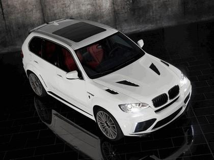 2010 BMW X5 ( E70 ) by Mansory 10