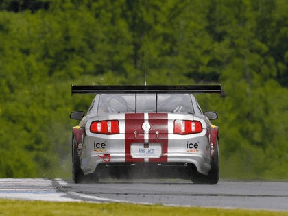 2010 Ford Mustang GT3 11