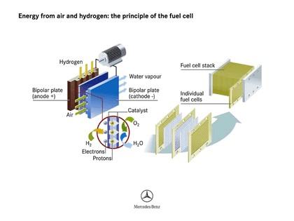 2005 Mercedes-Benz F600 HyGenius concept 79