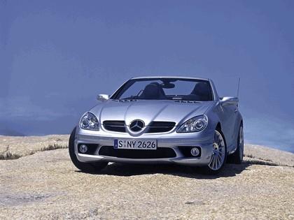 2005 Mercedes-Benz SLK 350 44