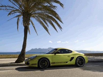2011 Porsche Cayman R 43