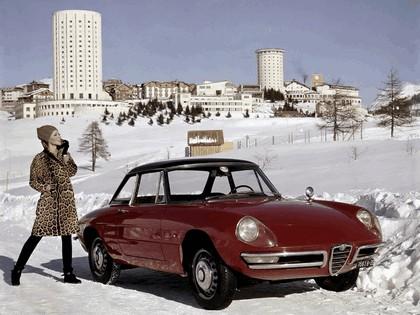 1966 Alfa Romeo Spider Duetto 6