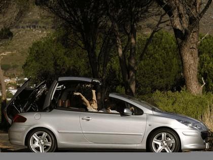 2005 Peugeot 307 CC 2